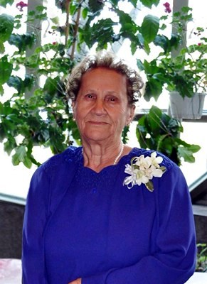 Zola Petsinis
