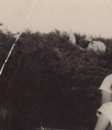 Warren & Jean   Wittig