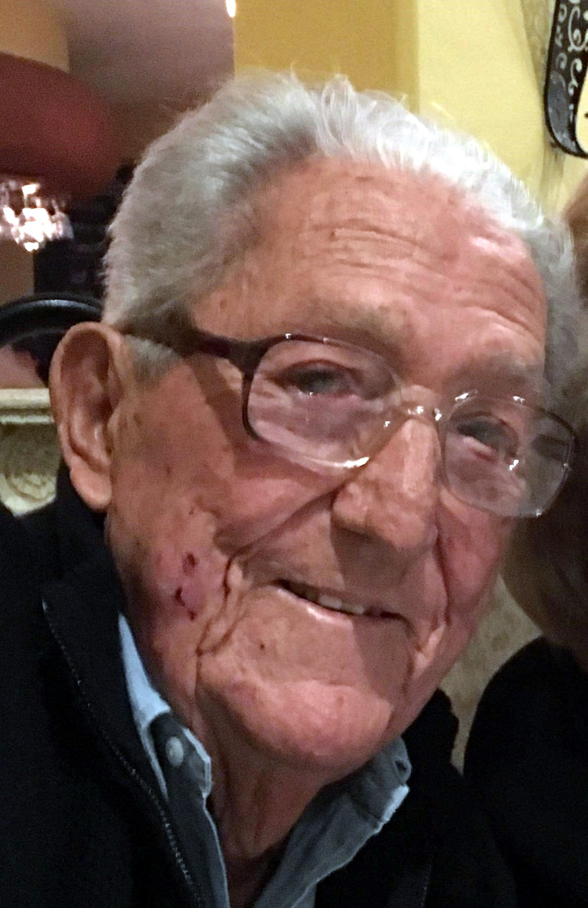 Vincent Domenic Pellegrini Obituary - Naples, FL