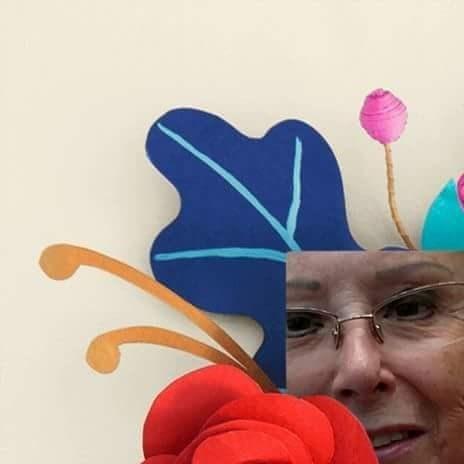 Patricia Rose  Volk