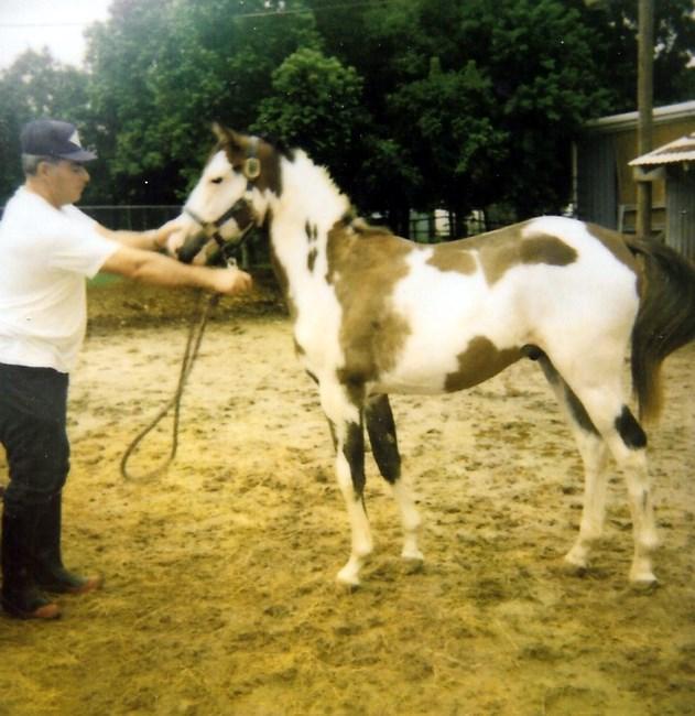 Harold Gene Oiler Obituary - Pasadena, TX