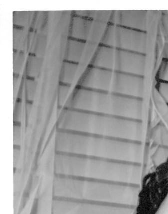 Raywin Ann  Clarke