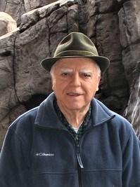 Ciro  Negri