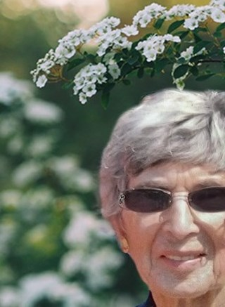 Shirley Joan  (Fischer) Steele