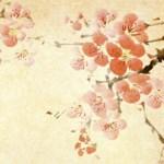 Yu Ying Chen
